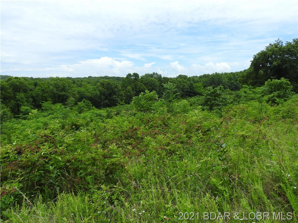 Lots/Land for sale – TBD  Highway W 333 Acres   Rocky Mount, Missouri